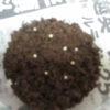 ヤエヤママルバネクワガタの採卵方法